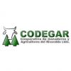 codegar-min