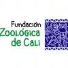 fundacion zoologica de cali